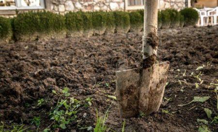 Нужно ли перекапывать землю осенью в огороде: правила перекопки