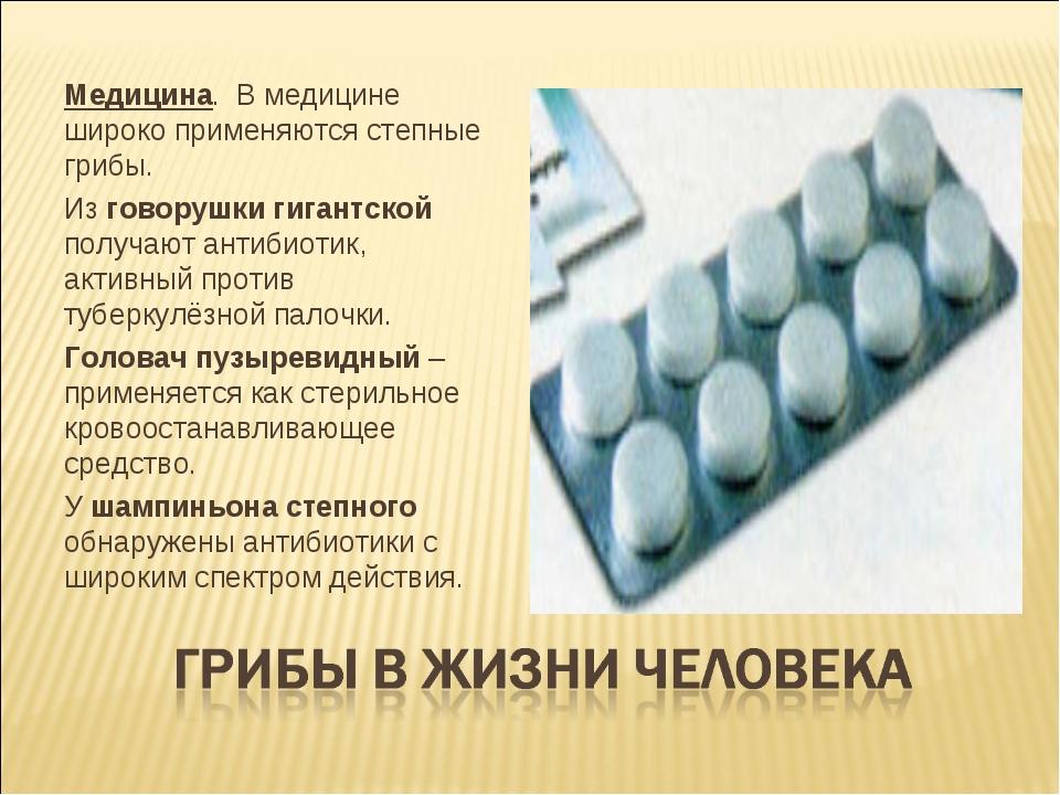 Применение грибов в медицине