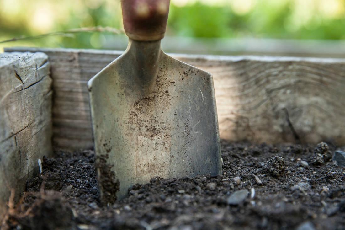 Нужно ли пахать огород под зиму