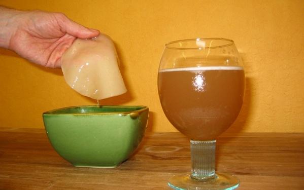 Гриб и напиток