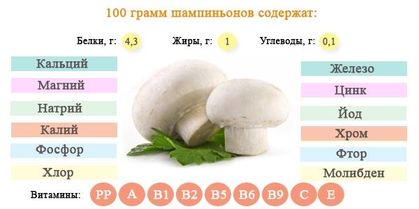 Химический состав шампиньонов