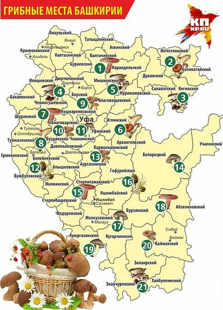 Карта грибных мест Башкирии