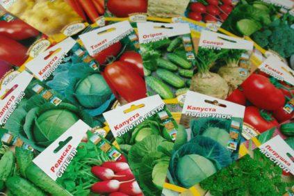Семена в интернет-магазине
