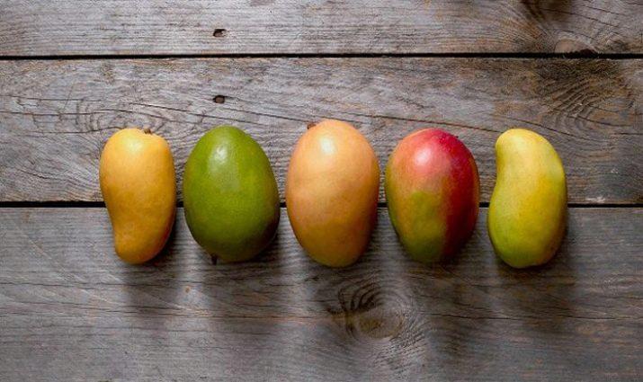 Стадии спелости манго