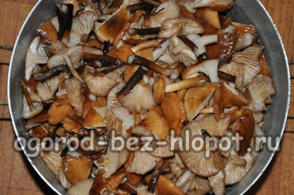 помыть грибы