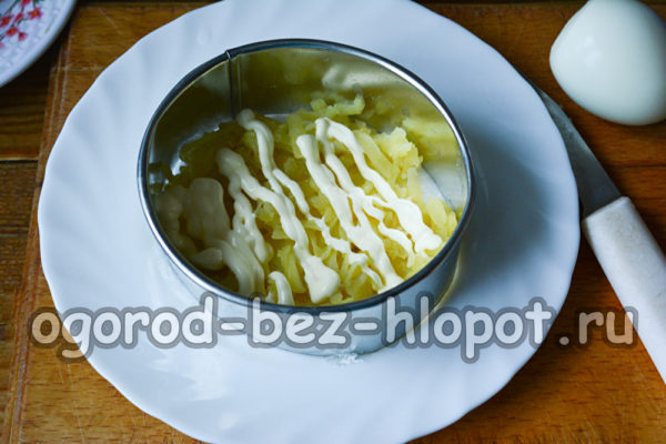 слой натертого картофеля смазать майонезом