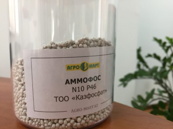 Влияние удобрения на растения