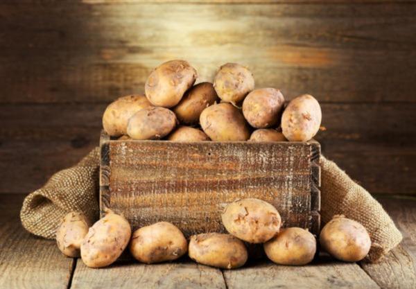 hranenie-kartofelja