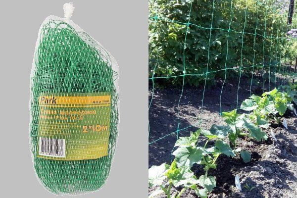 Сетка для огурцов: виды, как сделать, установить и выращивать, фото