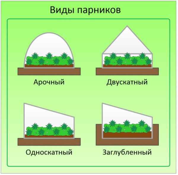 виды парников