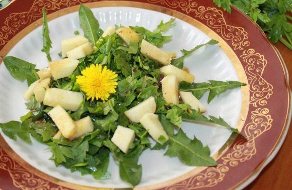 oduvanchiki salat