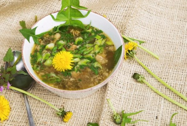 oduvanchiki sup