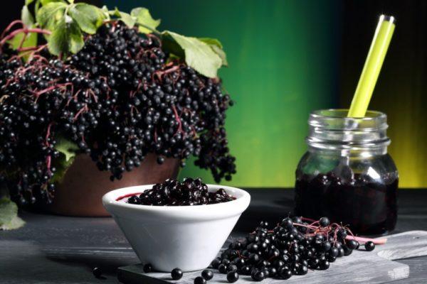 Как правильно употреблять черноплодную рябину