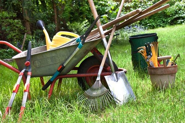 Садово-огородный инструмент, без которого невозможно обойтись на даче