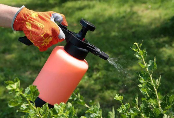 Стимулятор роста для растений