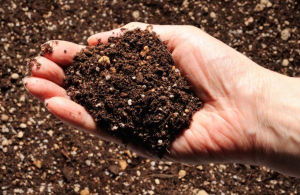 Внесение органических веществ