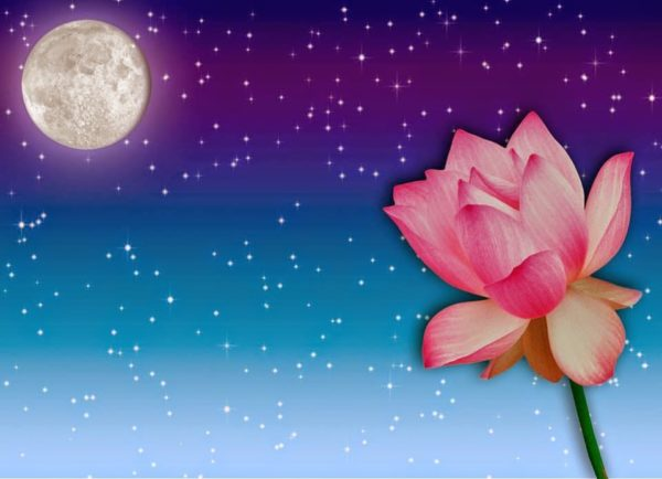 влияние луны на цветы