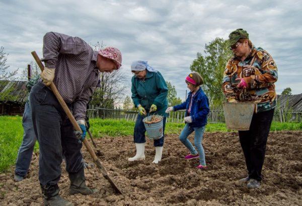 Налог на огород для дачников с 2020